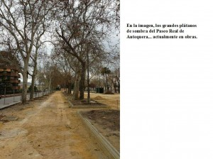 Paseo Real Antequera