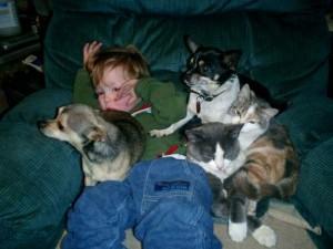 mascotas2-file0001587574212