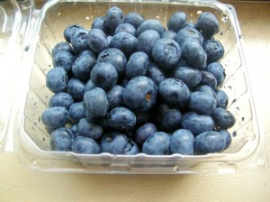 blueberry2-file8341308761374