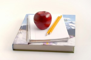 school-1382316218xb6h7