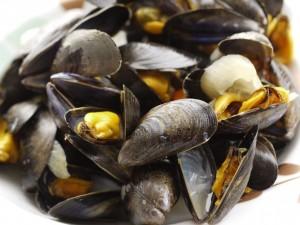 mussel-file9681315204979
